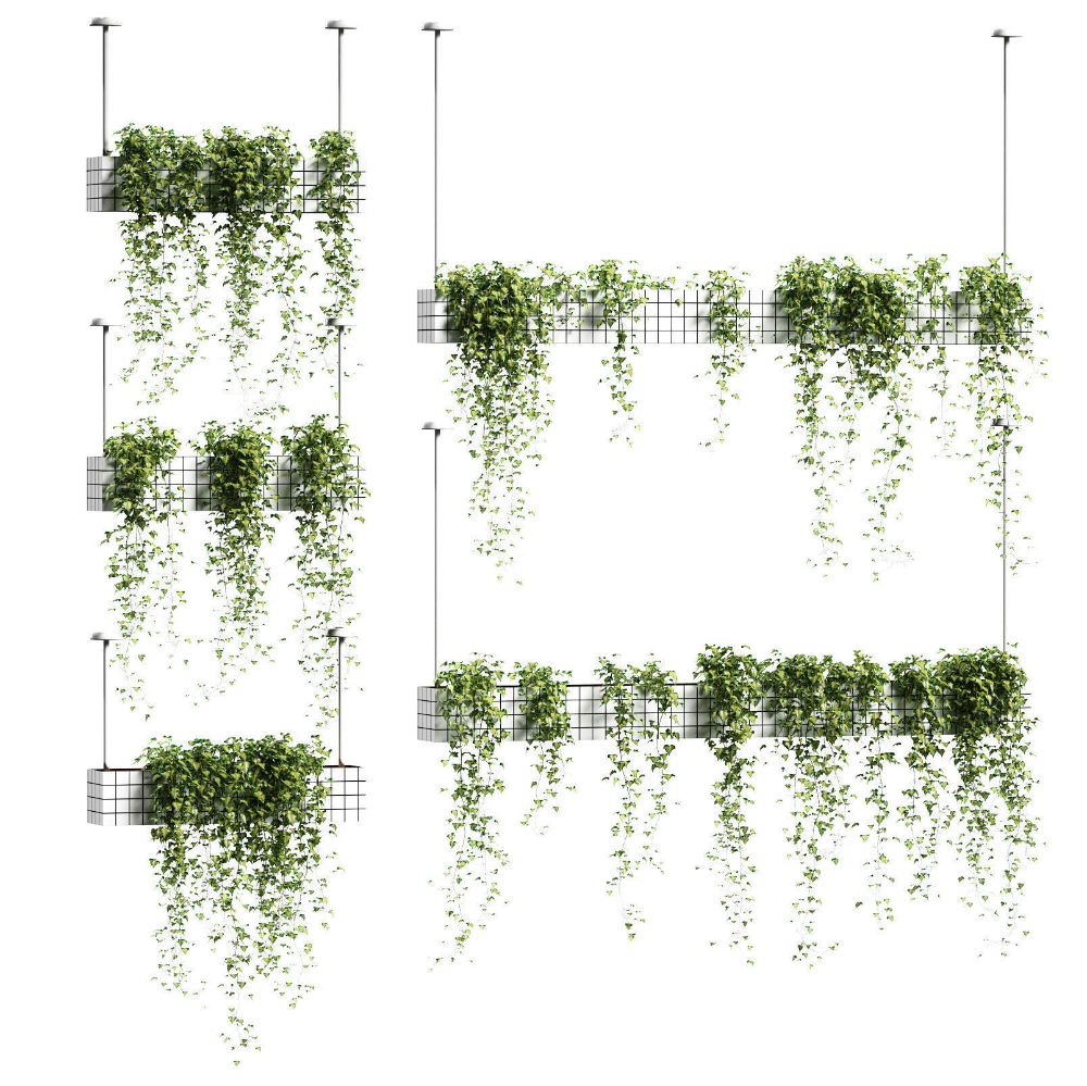 Ivy In Hanging Flower Pots 5 Models 3d Model Architecture Collage Tree Photoshop Hanging Flower Pots