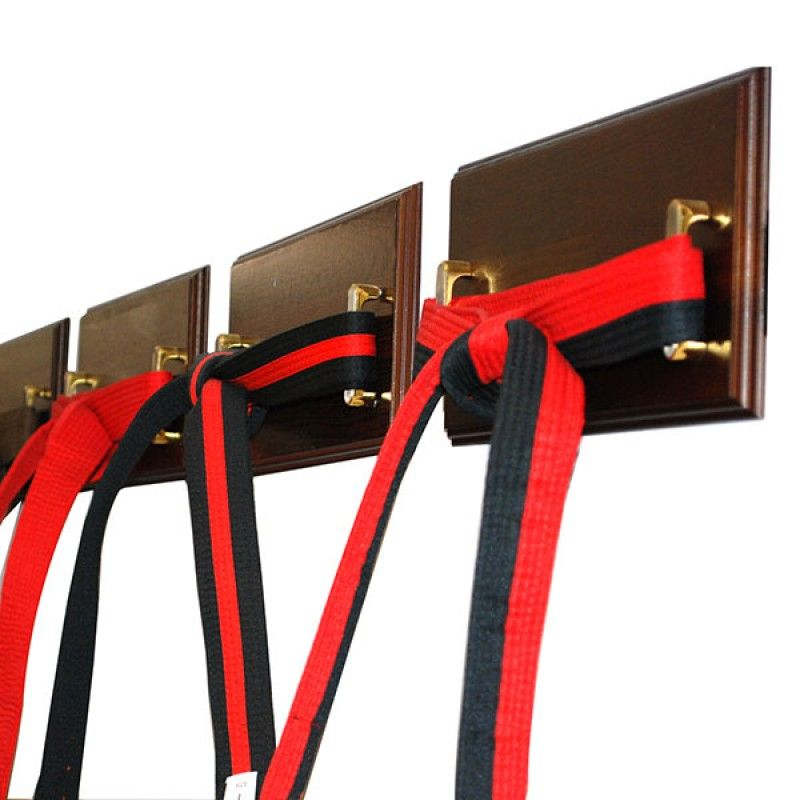 18 Level martial arts belt display rack kartate holder ata