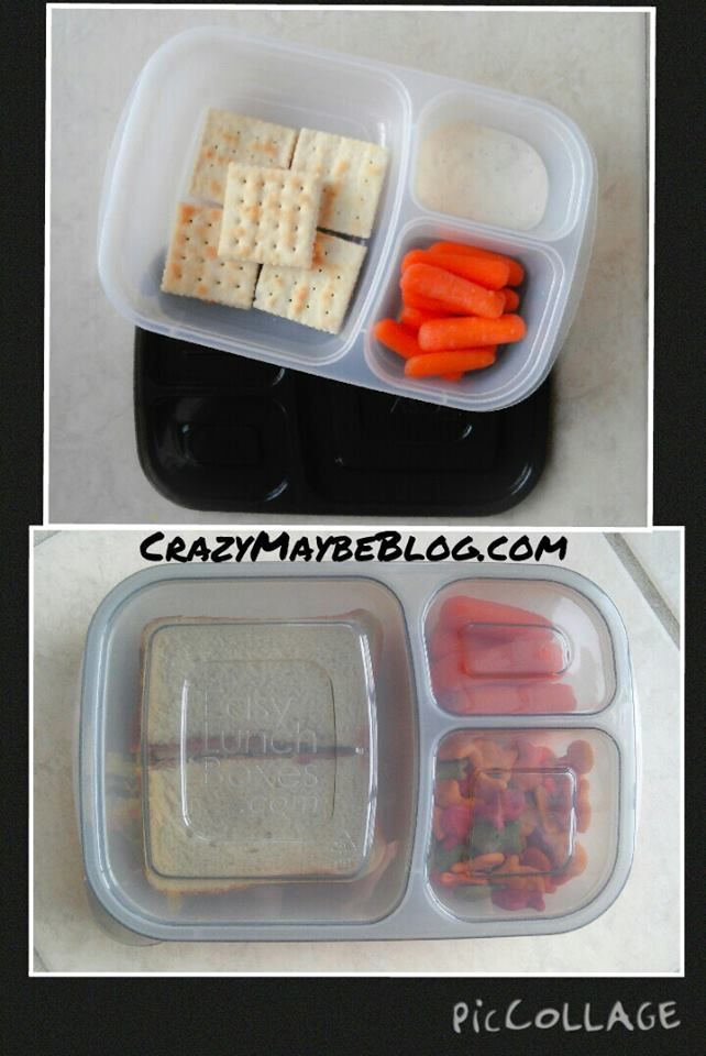 """""""Absolutely loving @easylunchboxes new 'Urban' lid colors!"""" - Crazy Maybe Blog"""