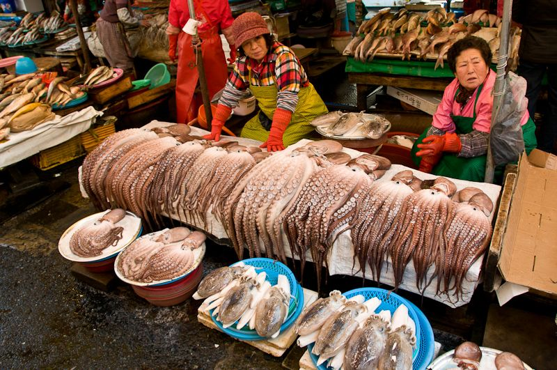 Asia Exports Seafood Biomes, Exports, Asia