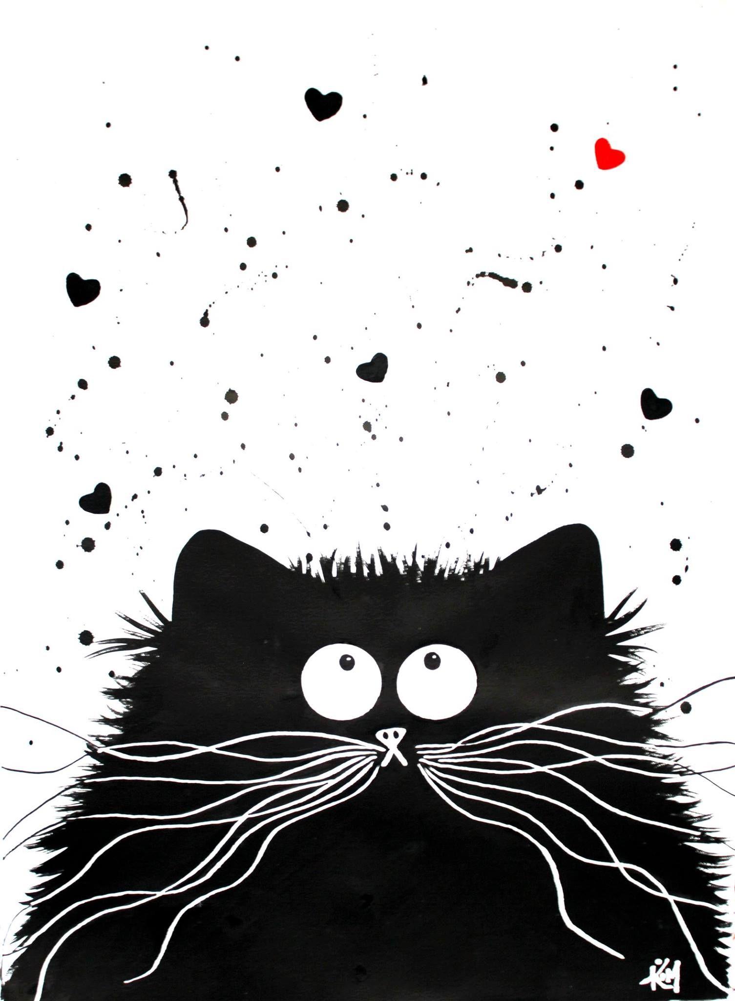 коты в черно белом цвете картины стал замечать