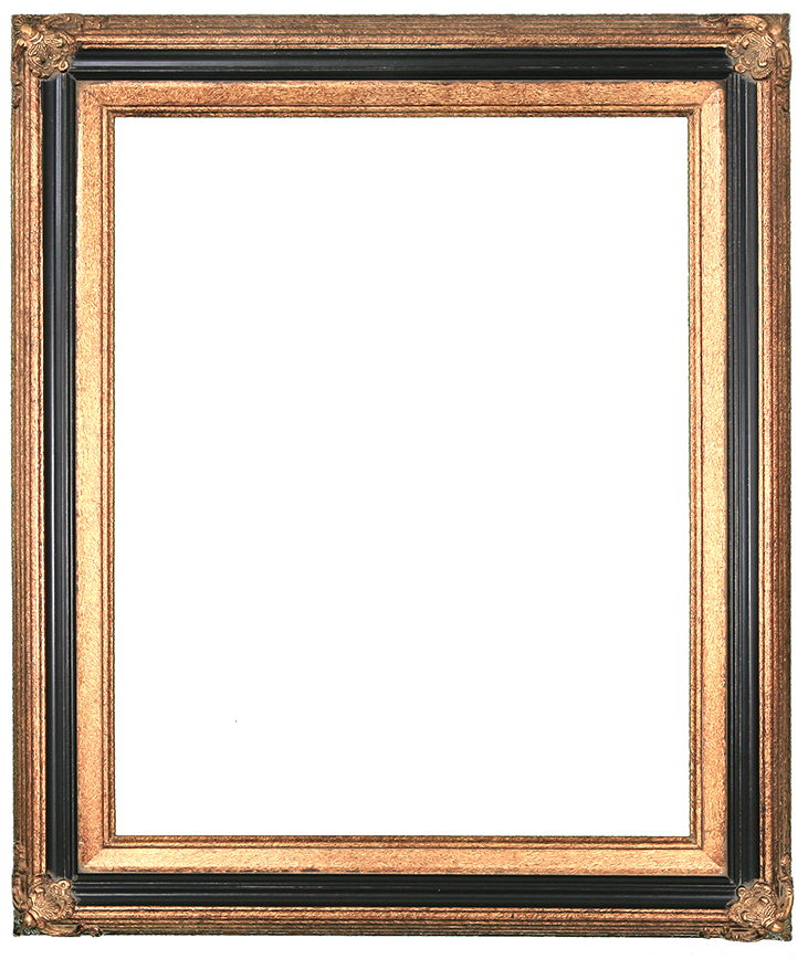 I like this simple Gold and Black Frame for Family Portraits ...