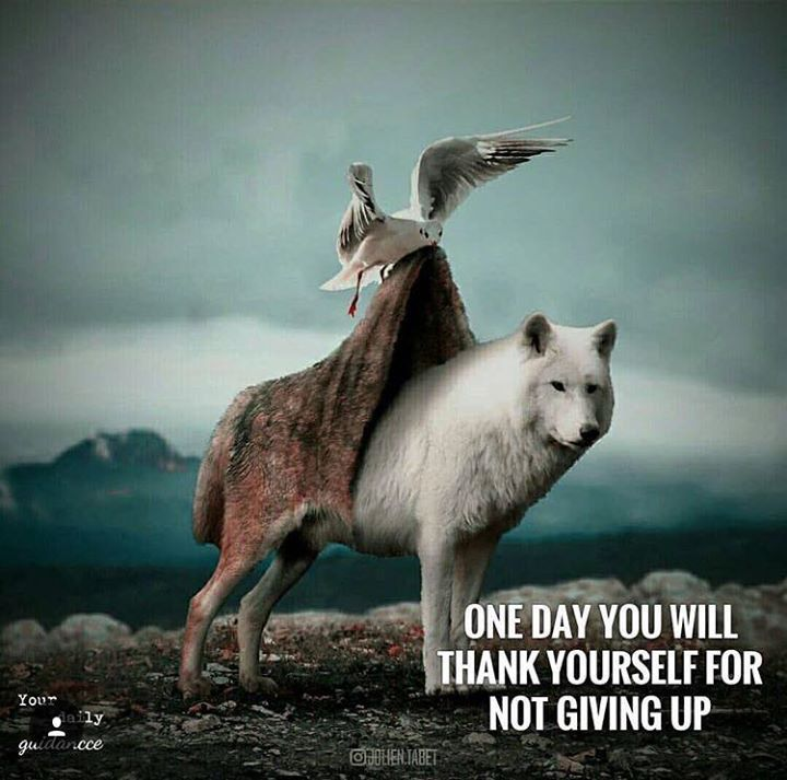 Positive Quotes : QUOTATION – Image : As the quote says – Description One day you will thank yourself for not giving up..