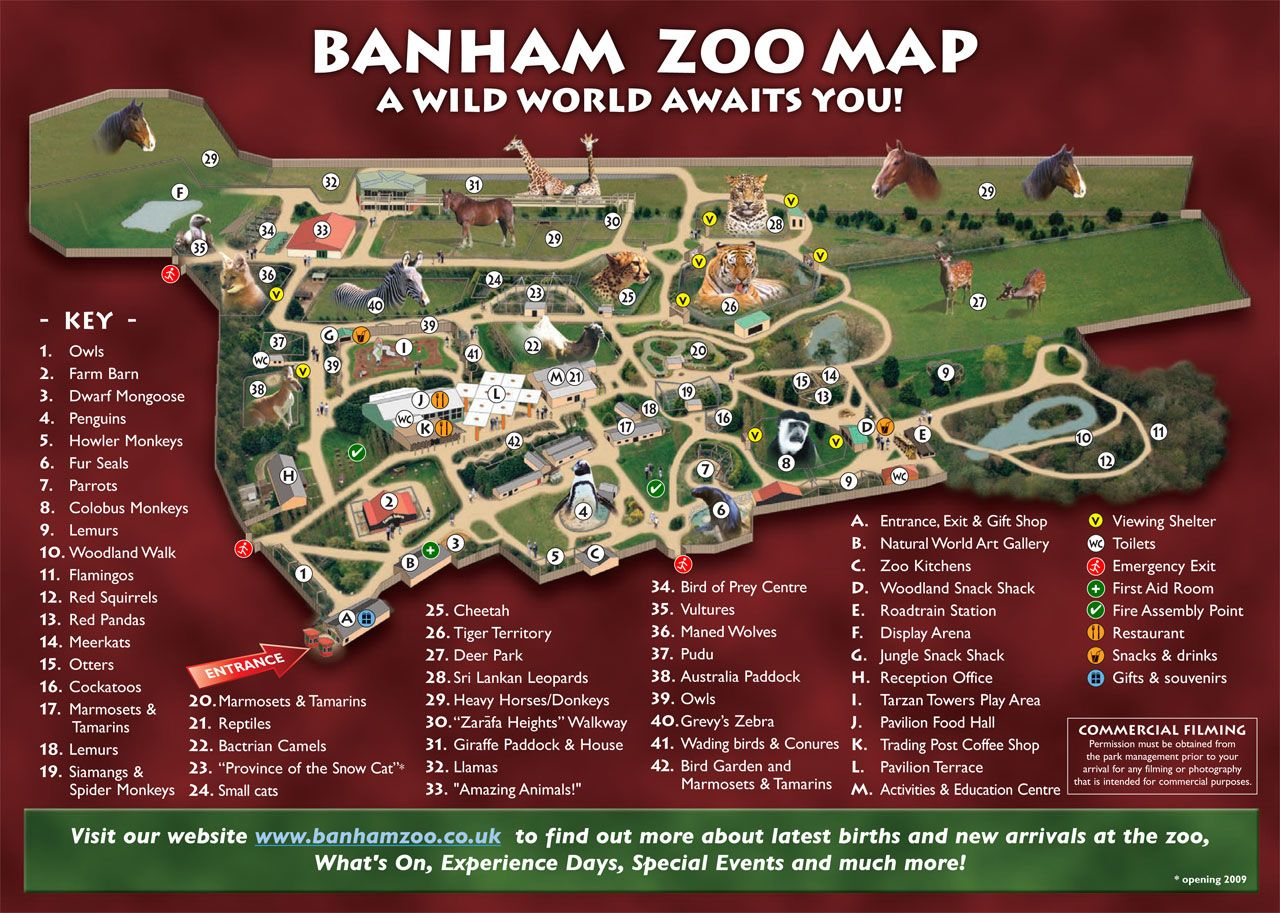 banham zoo map  Home sweet home  Pinterest  Zoos