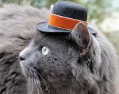 hats for cats http://www.etsy.com/shop/ToScarboroughFair
