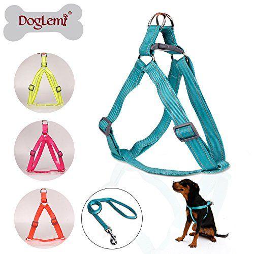 Doglemi Reflecting Nylon Large Pet Dog Step in Harness Safety Nylon Dog Harness (Green, S) Doglemi http://www.amazon.com/dp/B014ERIXNU/ref=cm_sw_r_pi_dp_xP0bxb0AXDH8V