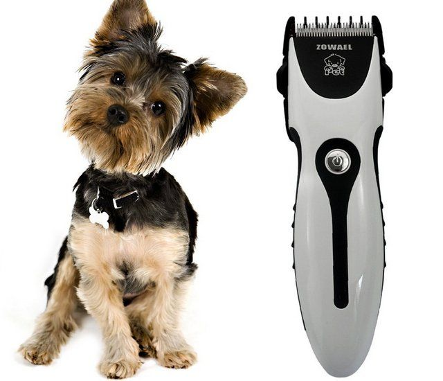 Pet Hair Clippers For Dogs Quick Buying Guide Sugar Bear Hair
