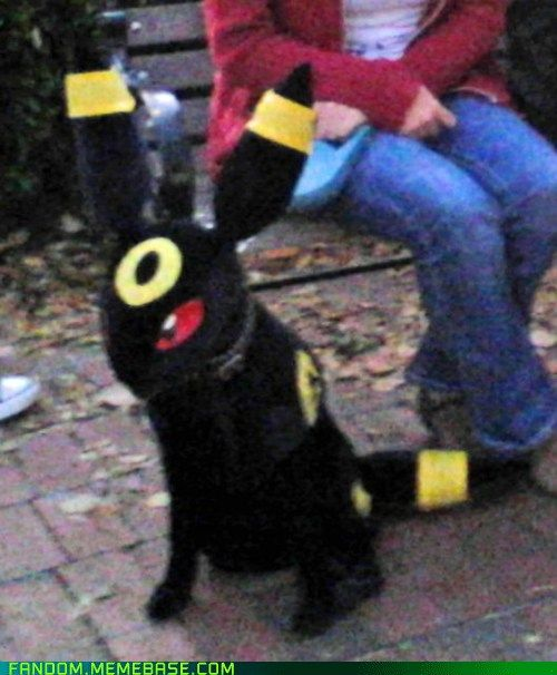 There S A Dog In There Pokemon Cool Pokemon Dogs