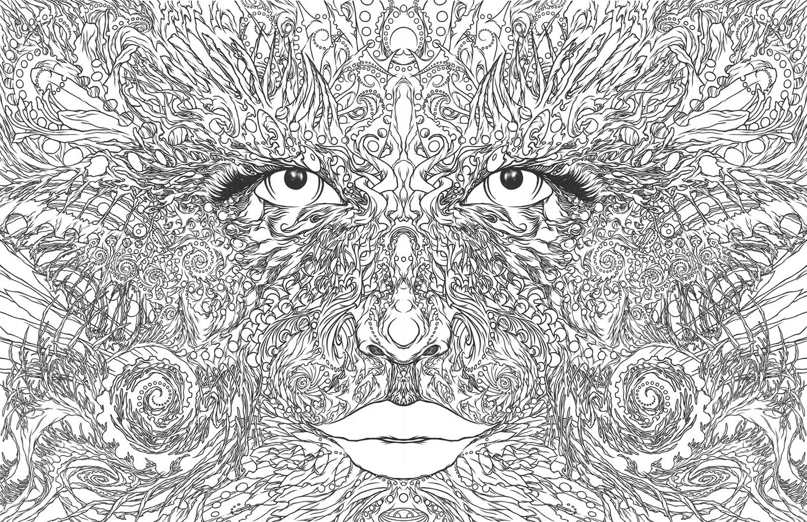 a wolf illustrations blog mother nature  malvorlagen