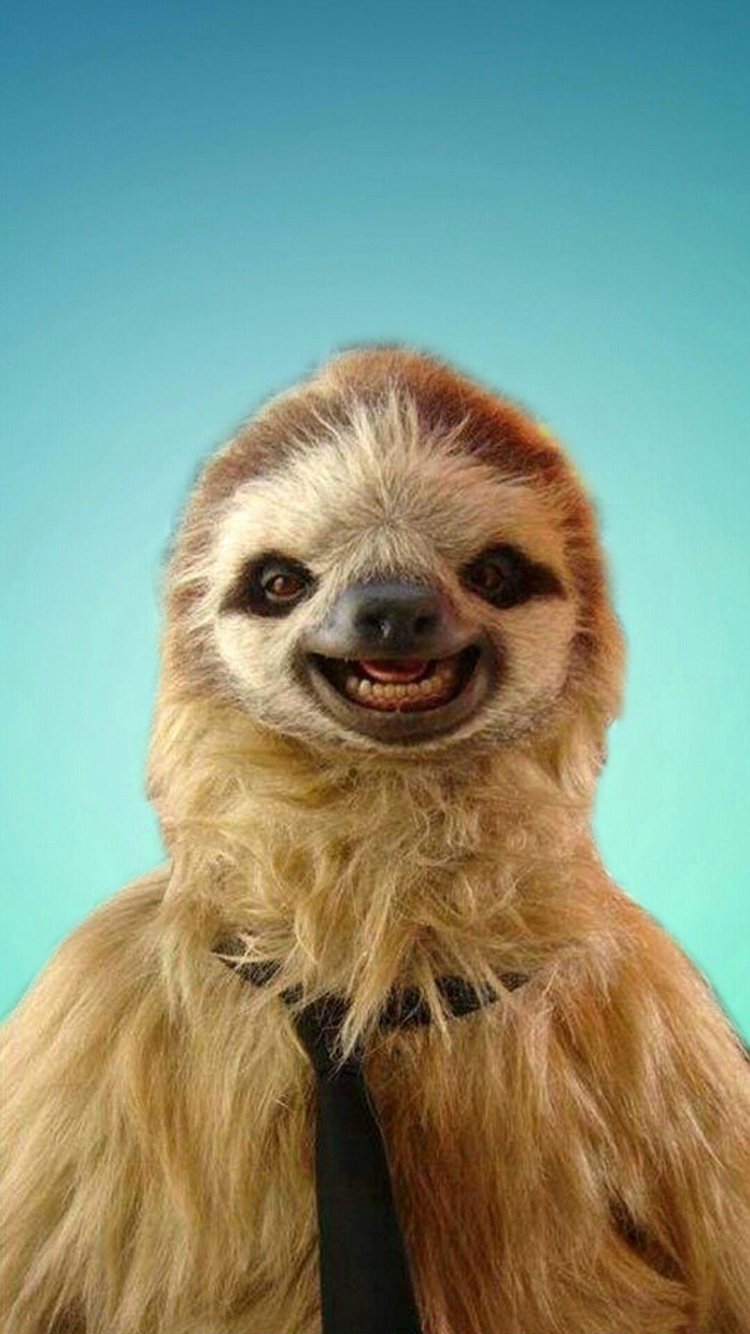Sloth! A cute sloth phone wallpaper I made. Smiling