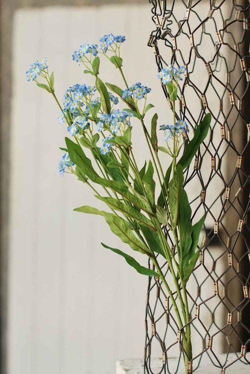 Light Blue Forget Me Not Flower Bush Wedding Flowers Flowers