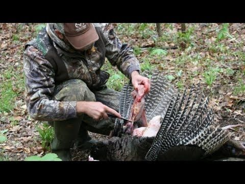 How To Clean A Turkey Will Brantley Of Realtree Com Gives Step By Step Instructions On How To Clean A Turkey Turkeyhun Turkey Hunting Hunting Quail Hunting