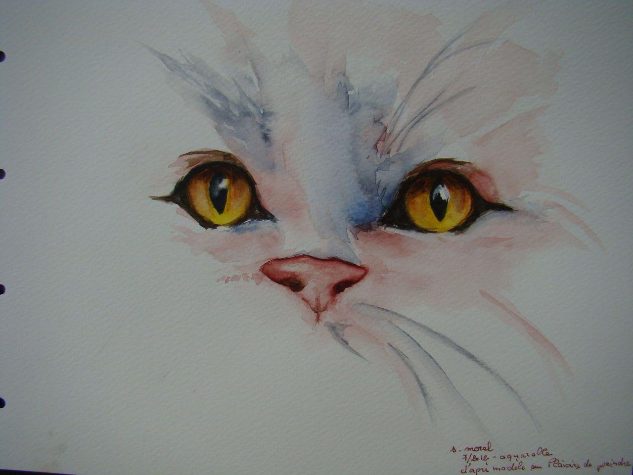 yeux de chat aquarelle mes peintures watercolor oeil de chat chat et peinture aquarelle. Black Bedroom Furniture Sets. Home Design Ideas