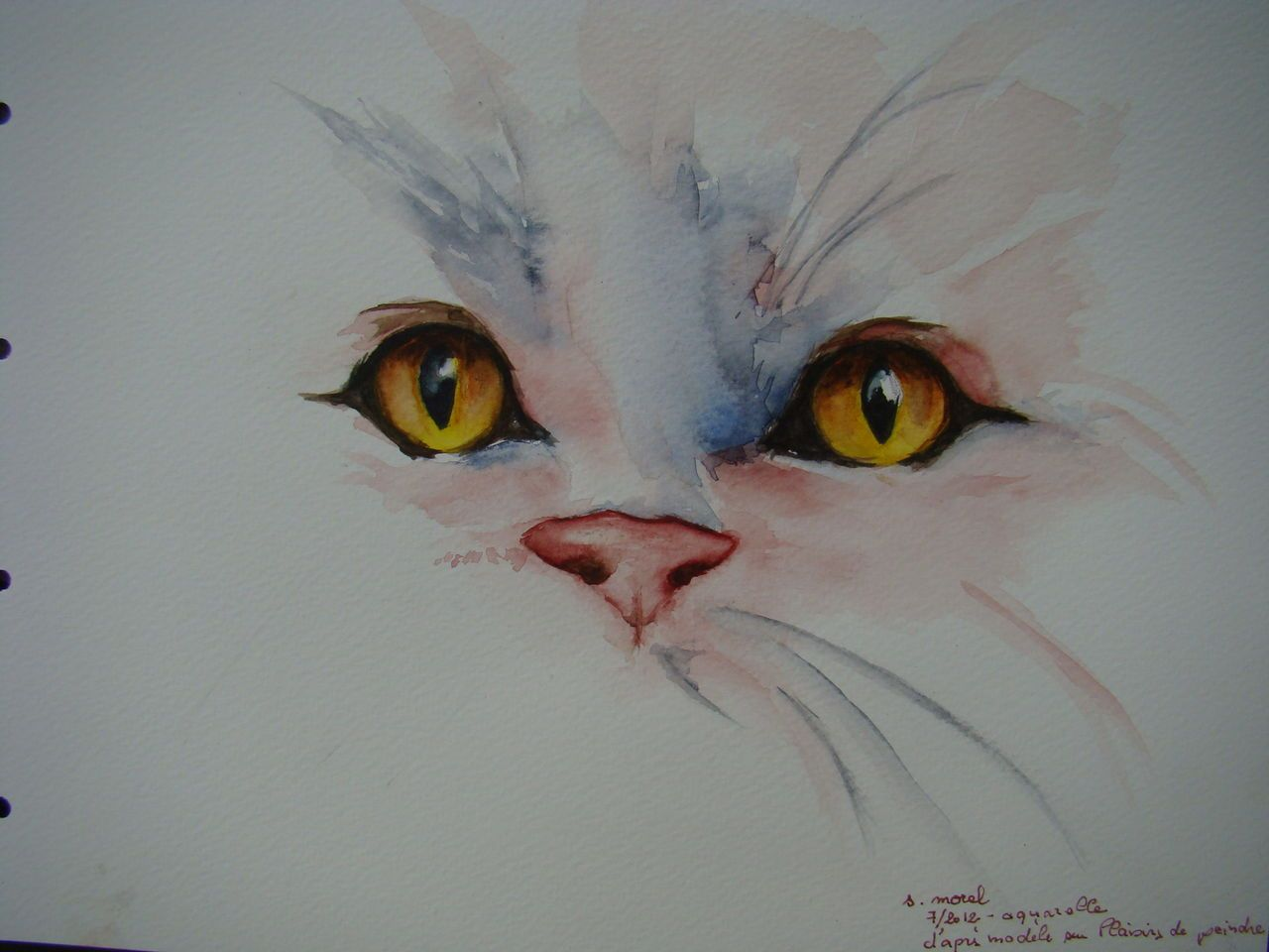 Yeux De Chat Aquarelle Dessin Chat Peinture Chat Dessin D Animal
