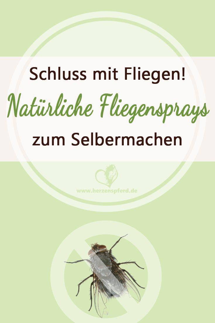 Endlich Schluss mit Fliegen - Warum Du keine chemischen Fliegensprays benutzen solltest und wie die bessere Alternative aussieht! - Herzenspferd