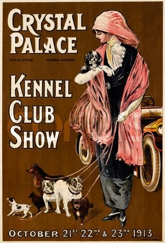 ADVERT DOG SHOW PET CANINE FUNNY COOL SHEFFIELD VINTAGE UK POSTERPRINT ABB5832B