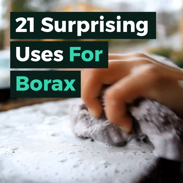 21 Surprising Uses for Borax