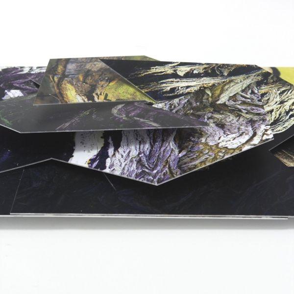 Carbono Galeria - Sem título - Carlos Vergara