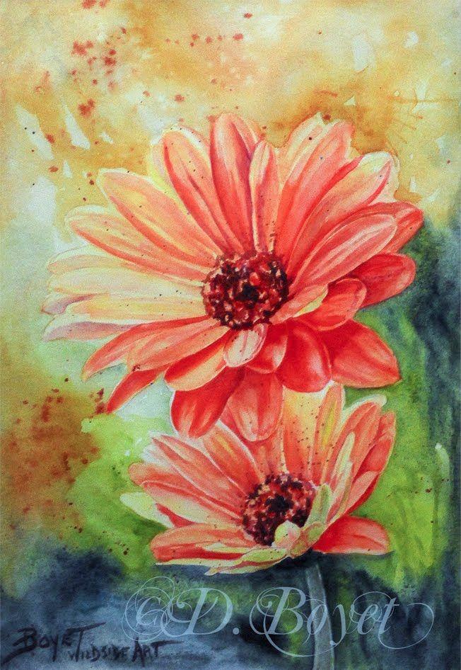 Gerber Daisy Watercolor Painting By Deborah Boyet Artist With