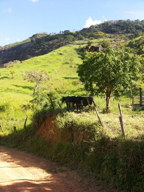 A Caminho Da Roca Com Imagens Lindas Paisagens Paisagem Rural
