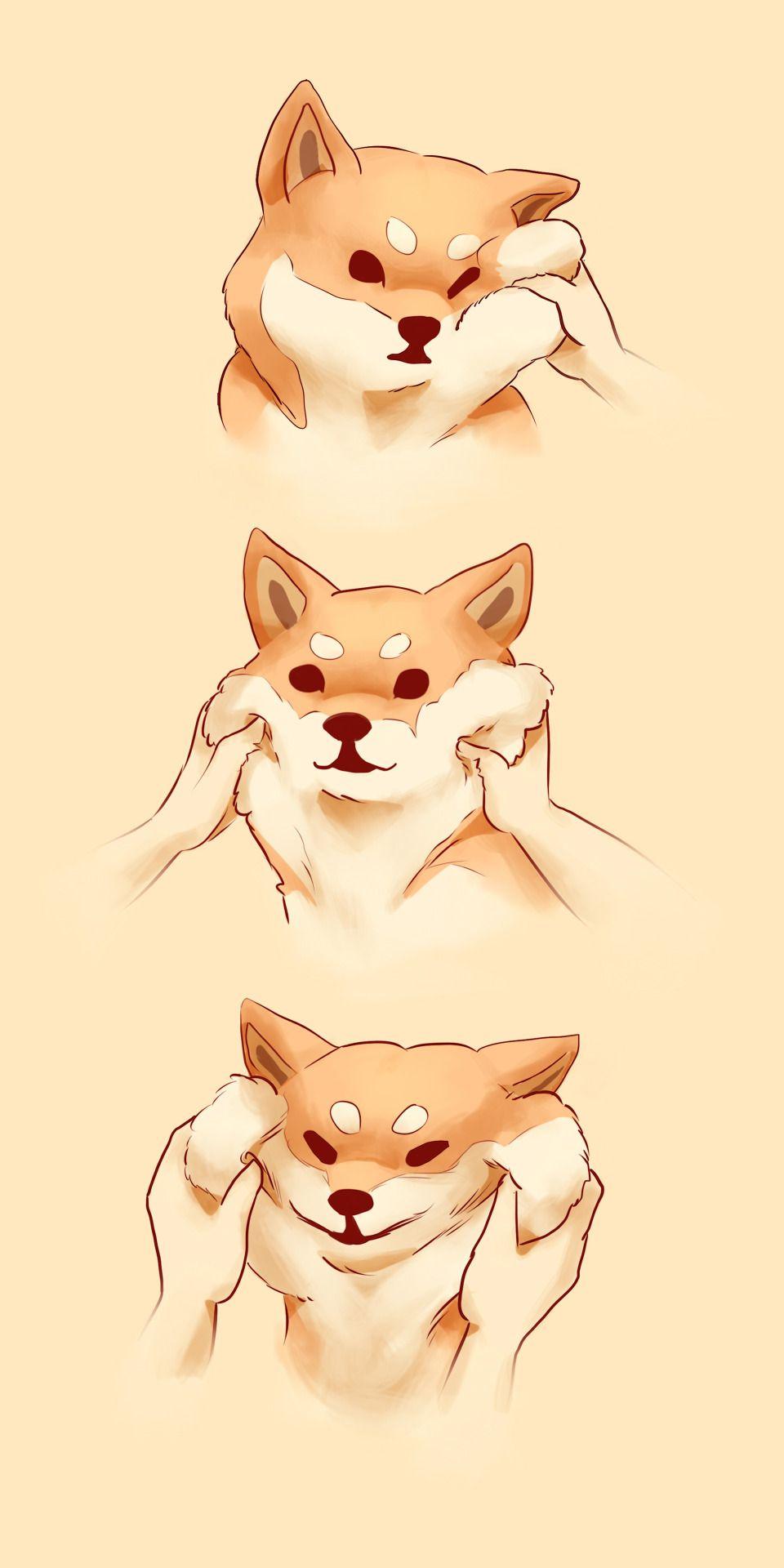 Shiba Squish Cute Drawings Cute Animals Cute Art