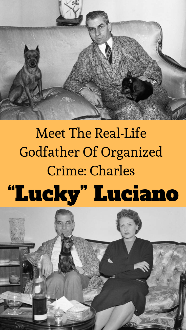 Meet The Real Life Godfather Of Organized Crime Charles Lucky Luciano The Godfather Fun Facts Organized Crime