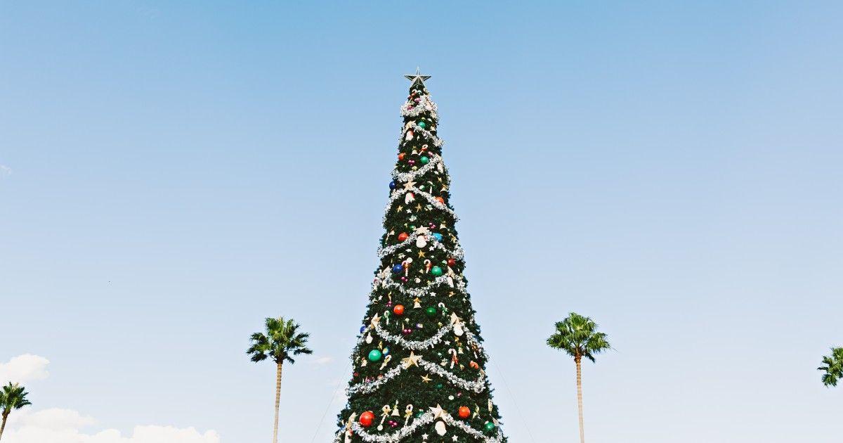 Pitääkö joulun olla tietynlainen ollakseen täydellinen? https://www.tehylehti.fi/fi/blogit/mainio/omannakoinen-joulu #joulu #joululoma #talvi