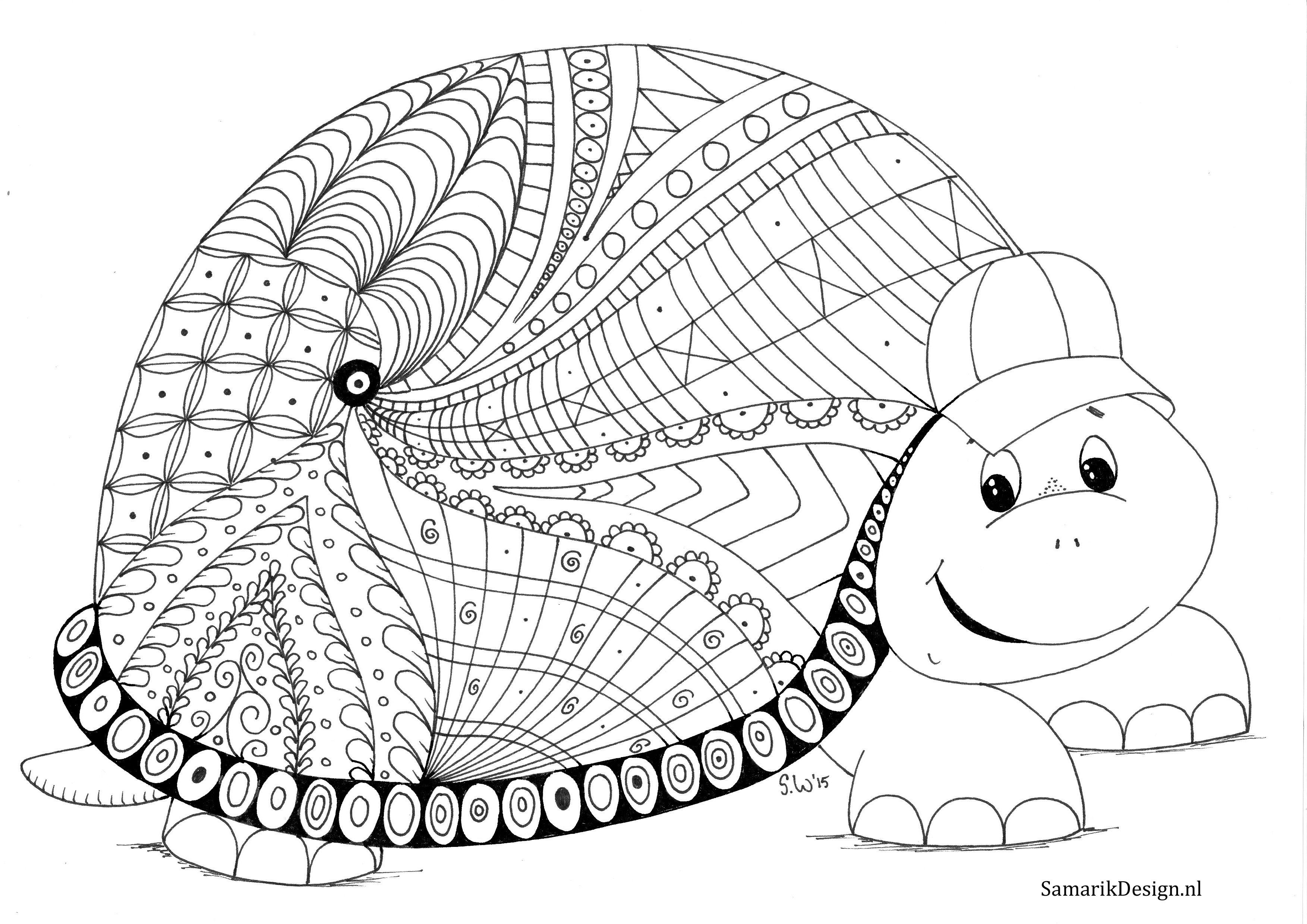 Schildpad Doodle Kleurplaten Kleurplaten Voor Volwassenen Schildpad