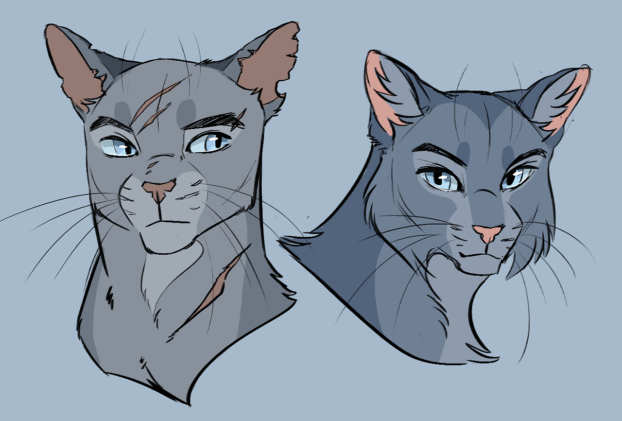 Pin by Skyler Starling on warriors Warrior cat drawings