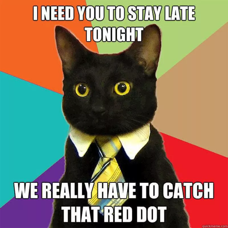 Cat Memes So Funny We Could Just Cry Always Pets Business Cat Meme Business Cat Cat Memes