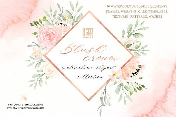 Blush cream. Watercolor flowers by LABFcreations on @creativemarket