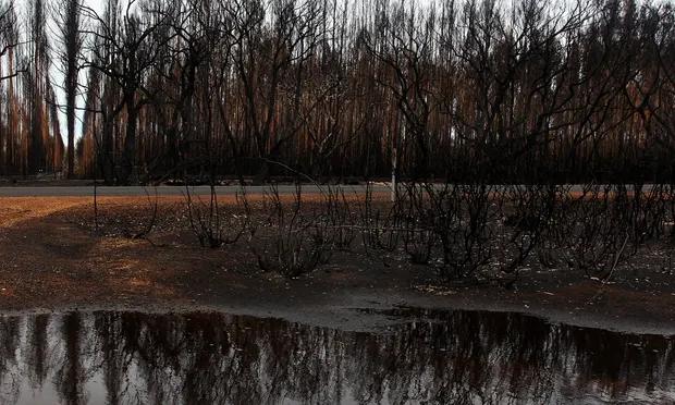 Australia fires heavy rain and cooler temperatures
