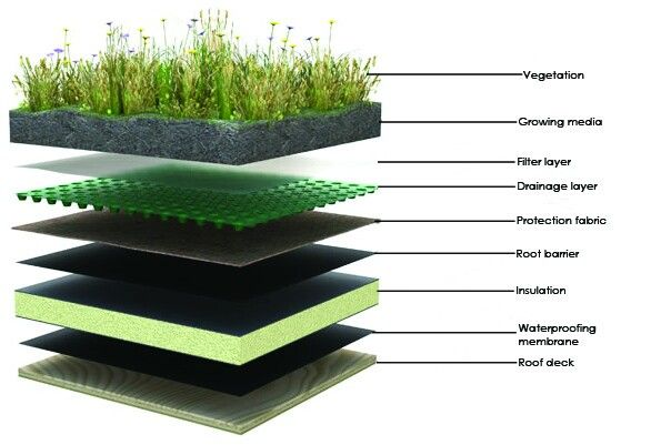 Green Roof Layers Green Roof Benefits Green Roof Green Roof Technology