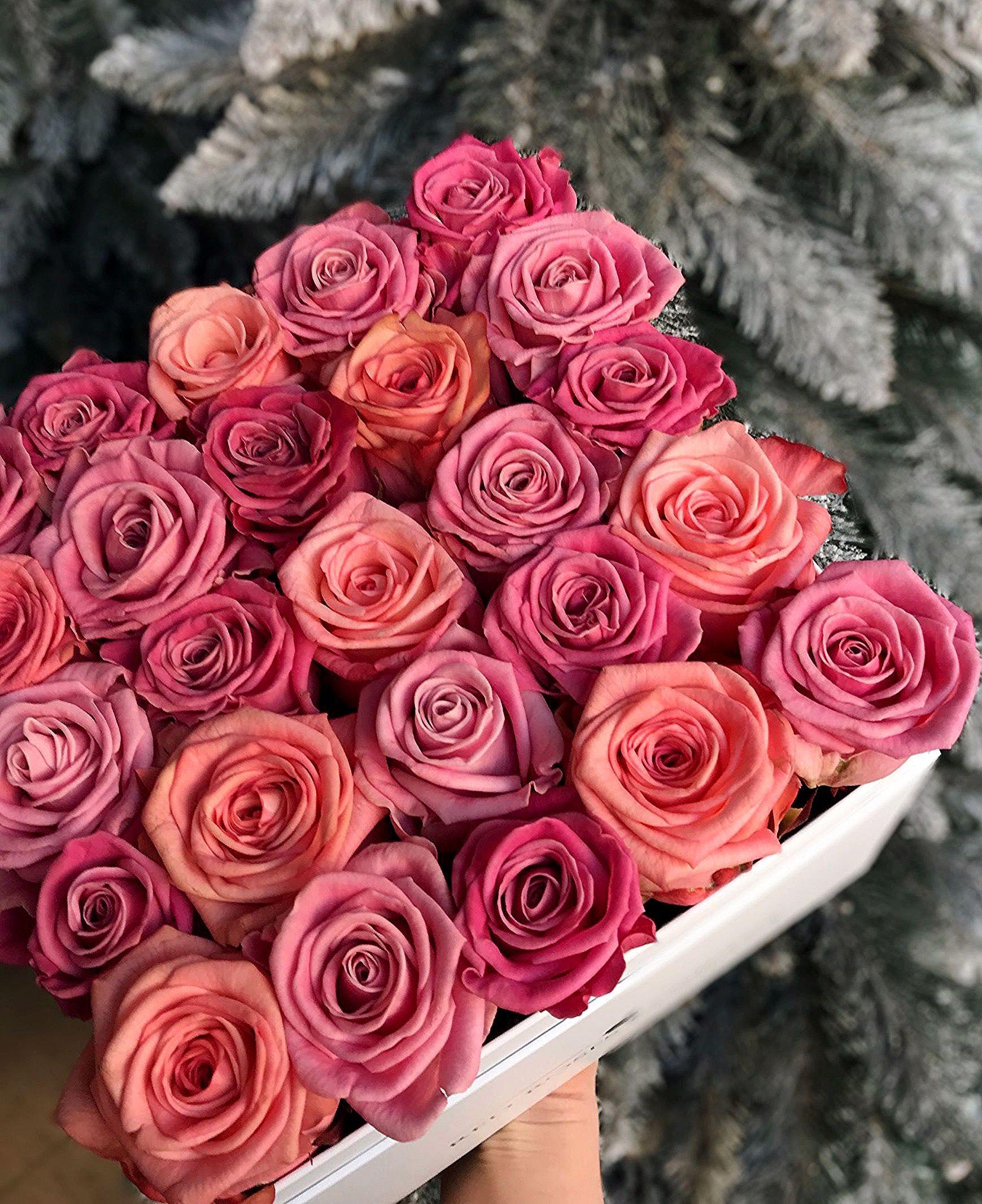 Kwiaty W Pudelku Roze W Pudelku Flower Box Red Rose Flower Beautiful Red Roses Terrarium Decor