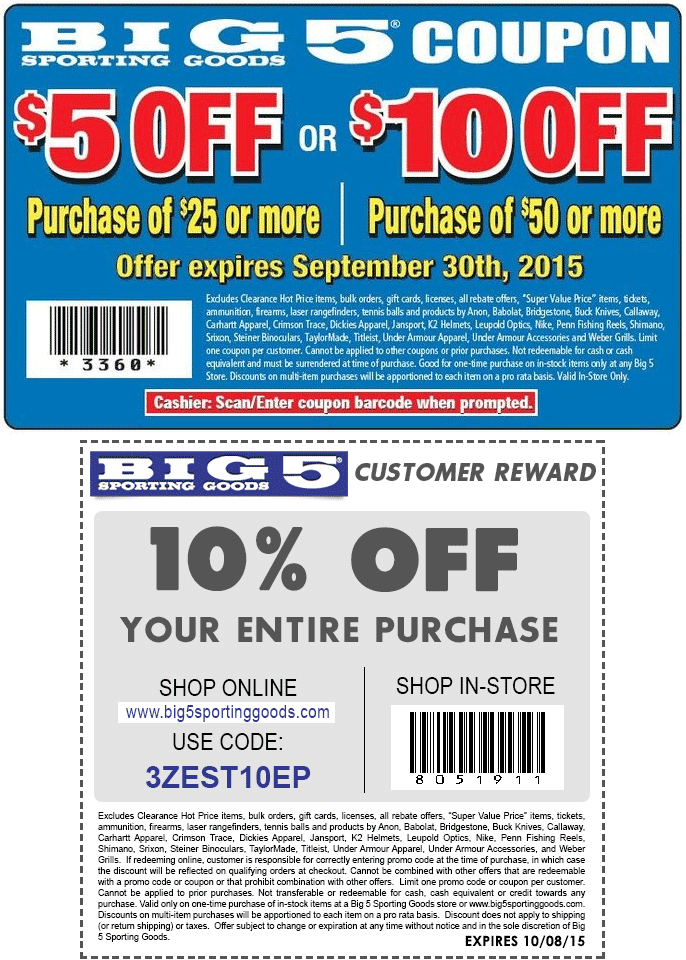 photo about Big 5 Printable Coupon called Large 5 low cost coupon 2019