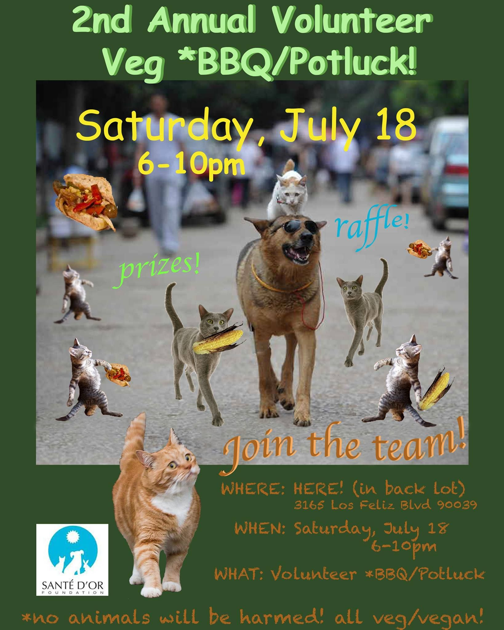 SAVE THE DATE Pet adoption center, Animal rescue, Animals