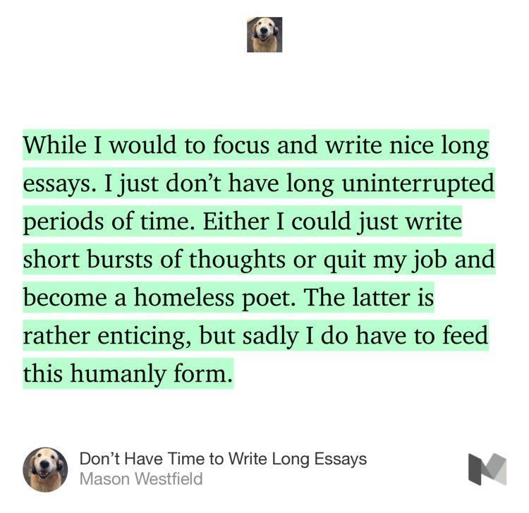 Dont Have Time To Write Long Essays Humor Funny Satire Life  Dont Have Time To Write Long Essays Humor Funny Satire Life Nomad  Showerthought Blog Journal Daily