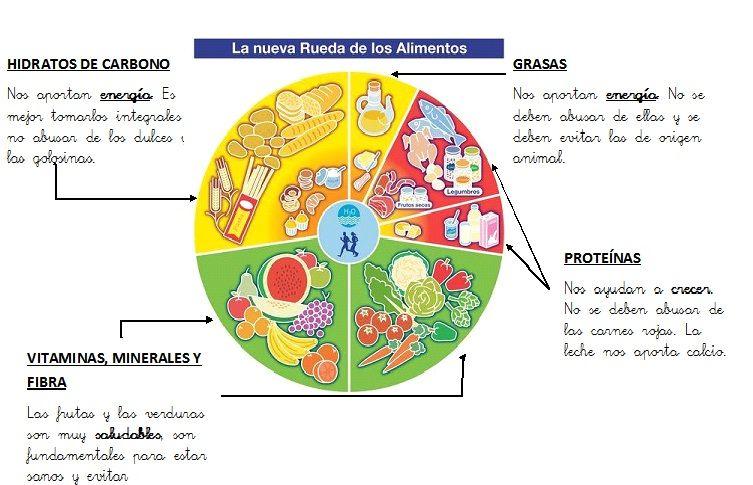Clasificacion de los alimentos energ ticos constructores y - Piramide alimenticia para colorear ...