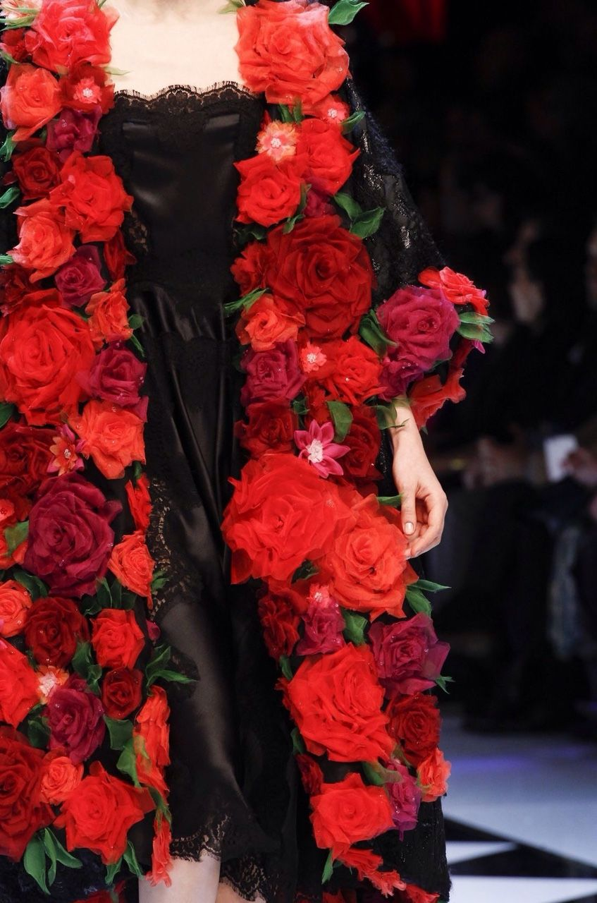 Dolce & Gabbana, Fall 2016, Ready to Wear