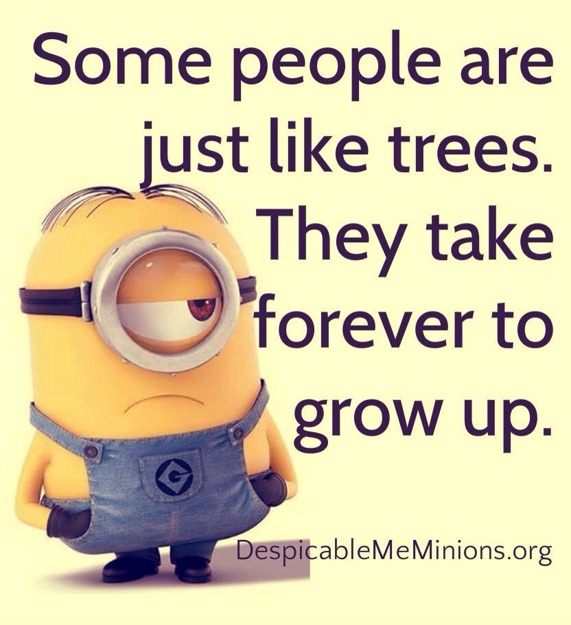 Some People Are Just Like Trees Minions Funny Funny Minion Memes Funny Minion Quotes