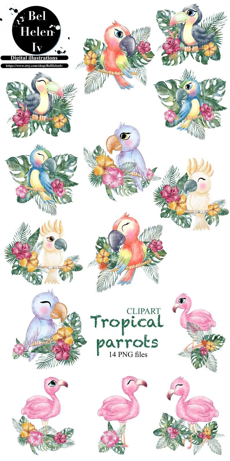 Tropical Flowers Iron On Tropical Parrot Scene Digital Artwork PNG File Clipart Children/'s Clothing DTG Printing Sublimation Design