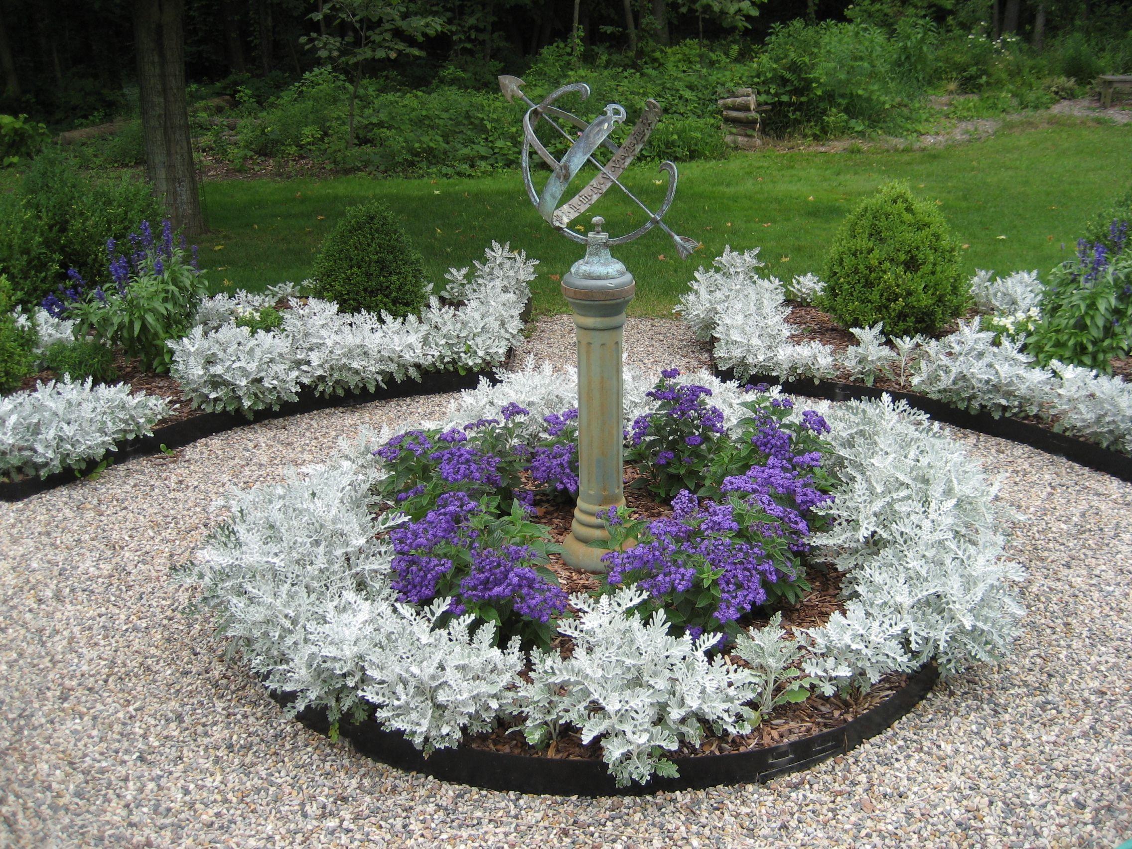 Image Result For Dusty Miller Varieties Plants Flower Beds Heather Plant Dyi Garden Ideas Moon Garden