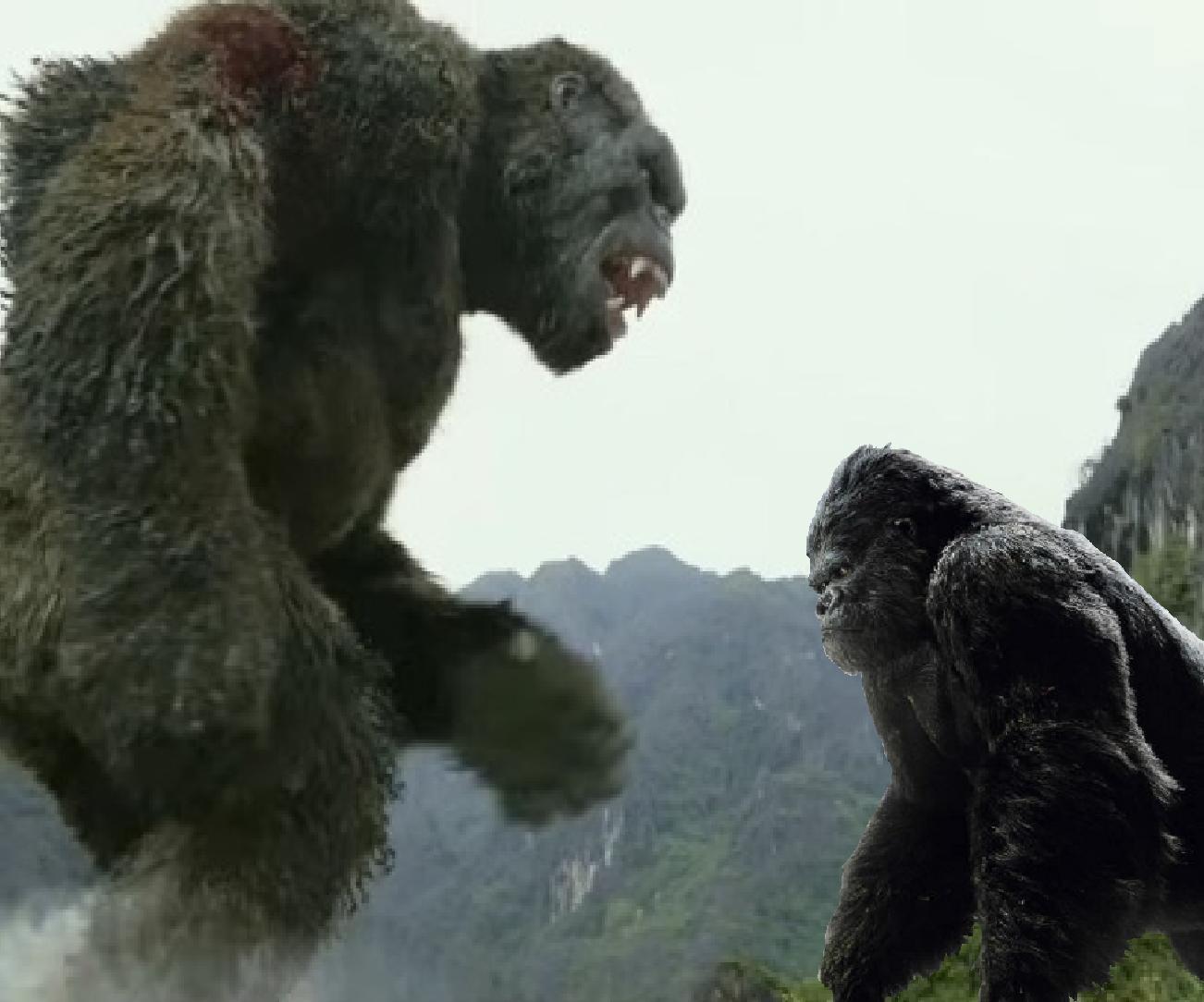 Kong 2017 Vs King Kong 2005 In 2020 King Kong 2005 King Kong Kong 2017