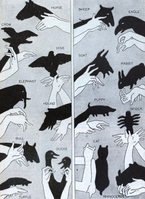 Hand Shadow Puppets Youtube Video
