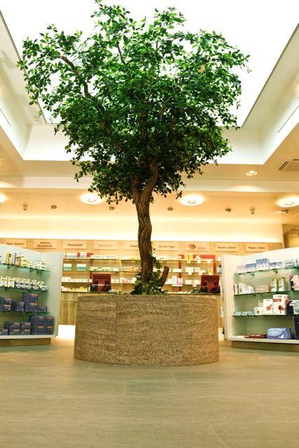 #großer Kunstbaum von #Bellaplanta #Maßanfertigung #Premium Kunstpflanzen #kreative Planung #innovative Begrünungskonzepte #Dekobaum #Geschäftsräume #Lieferung und Aufbau vor Ort #Miet,-Kaufoptionen #B1 Zertifikat #individuelle Beratung