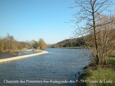 Chaussée de Pommiers sur le Thouet.