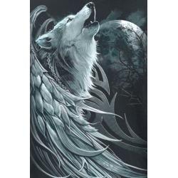 Photo of Spiral Wolf Spirit T-Shirt Spiral Direct
