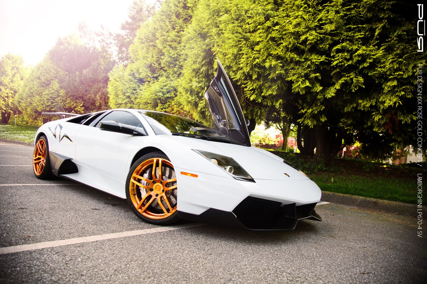 lamborghini gallardo 2015 gold. lamborghini murcielago lp6704 sv with rose gold pur wheels gallardo 2015