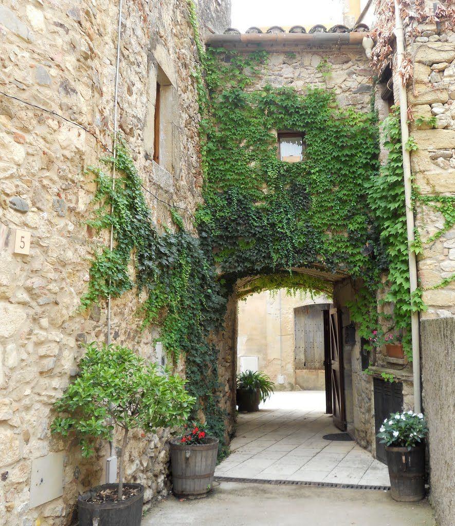 Sant Sadurní De L Heura Girona Catalonia Trepadoras Diseños De Jardines Plantas Trepadoras