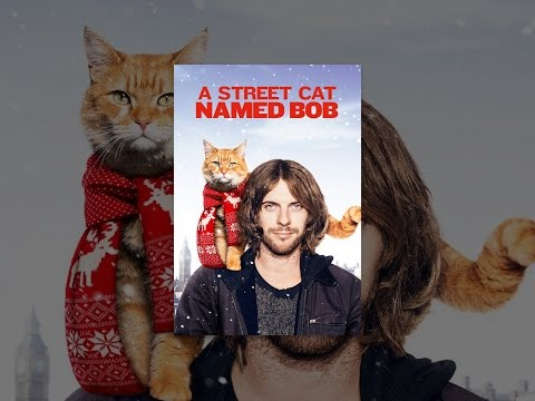 (6) A Street Cat Named Bob YouTube in 2020 Cat names